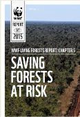 Living Forests Report: Saving Forests at Risk